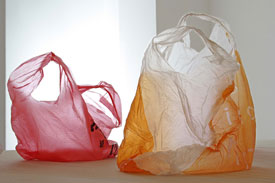 attia_untitled_plastic_bag